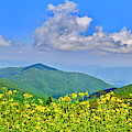 Blue Ridge Parkway, Virginia by The American Shutterbug Society