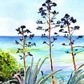 Blue Sea And Agave by Carlin Blahnik CarlinArtWatercolor