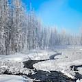 Blue Skies Of Winter by Karen Wiles