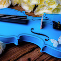 Blue Violin And White Butterfly by Garry Gay