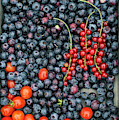 Blueberries Redcurrants And Tomatoes by Tim Gainey