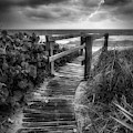 Boardwalk To The Sea In Radiant Black And White by Debra and Dave Vanderlaan