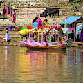 Boat And Bank Of The Narmada River, India by Amy Sorvillo