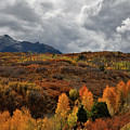 Boiling Sky Over Dallas Divide Fall Colors by Ray Mathis
