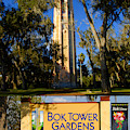 Bok Tower Gardens Poster A by David Lee Thompson