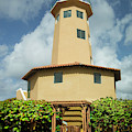 Bonaire Lighthouse by Max Huber