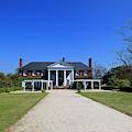Boone Hall Plantation In Mount Pleasant South Carolina by Jill Lang