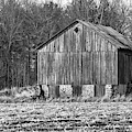 Boonies Barn 2018 by Thomas Young