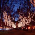 Boston Commonwealth Avenue Mall Christmas by Joann Vitali