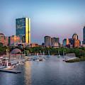 Boston Skyline And The Charles River Basin by Joann Vitali