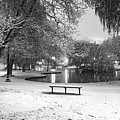 Boston Snowfall In The Boston Public Garden Boston Ma Pond Black And White by Toby McGuire