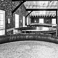 Bourbon Begins Black And White by Mel Steinhauer
