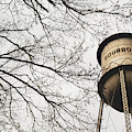 Bourbon Vintage Water Tower And Tree Branches - Sepia by Gregory Ballos
