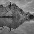 Bow Lake Summer Sunrise Reflections Black And White by Adam Jewell