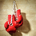 Boxing Gloves by Mauro Celotti