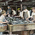 Boys Cutting Sardine Canning, Montetey, Cal. Circa 1908 by California Views Archives Mr Pat Hathaway Archives
