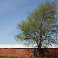 Brickline Farm by Dylan Punke