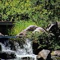 Bridge And Waterfalls At Chicago Botanical Gardens by Colleen Cornelius