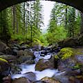 Bridge Below Rainier by Chad Dutson