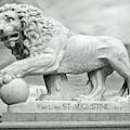 Bridge Of Lions Statue Bw by D Hackett