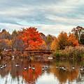 Bridge Over The Pond by Mark Dodd