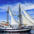 Brigantine On The Ionian Sea by Lyl Dil Creations