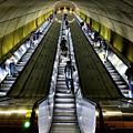 Bright Lights, Tall Escalators by Lora J Wilson