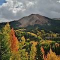 Brilliantly Colored Aspens And Red Mountain In Colorado by Ray Mathis