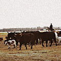Bringing In The Cows by Kae Cheatham