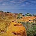 Broken Hill Panoramic II by Bill Thomas