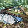 Bronx River Falls by Lynne Bolwell