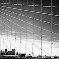 Brooklyn Bridge Web New York City by John Rizzuto