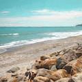 Bruce Bay New Zealand Painterly by Joan Carroll