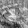 Bryce Canyon National Park Bw by Chuck Kuhn