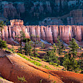 Bryce Canyon by Oscity