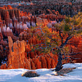 Bryce Canyon Winter Light by Leland D Howard