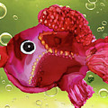 Bubbles Funky Fish by Christine Dekkers