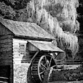Bucks County Mill In Black And White by Carolyn Derstine