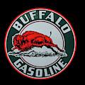 Buffalo Gasoline by Tony Baca