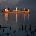 Bulk Carrier Ship by Robert Potts