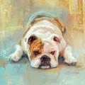 Bulldog With The Blues by Jai Johnson