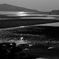 Burgh Island Black And White by Helen Northcott