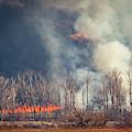 Burning Squaw Creek by Jeff Phillippi