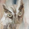 Burrowing Owl Digital Painting by Gene Norris