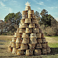 Bushel Basket Christmas Tree by Bill Swartwout Photography