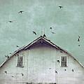 Busy Barn by Julie Hamilton