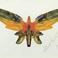 Butterfly, 1890 by Albert Bierstadt