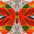 Butterfly Art - Circles And Spirals - Omaste Witkowski by Omaste Witkowski