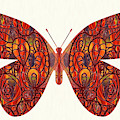 Butterfly Illustration Art - Complex Realities - Omaste Witkowski by Omaste Witkowski