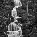 Buttermilk Falls Bw by Susan Candelario